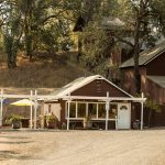 The Best of Napa Valley – What Not To Miss  2