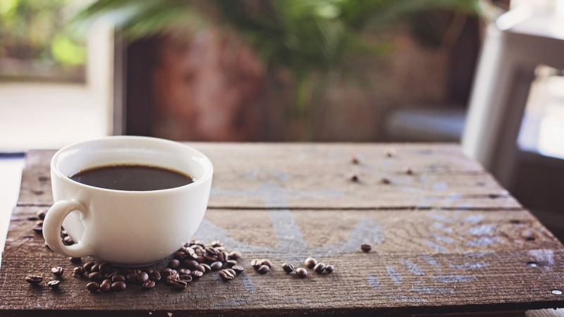 Coffee Cove Company Provides Welcoming Ambience 3
