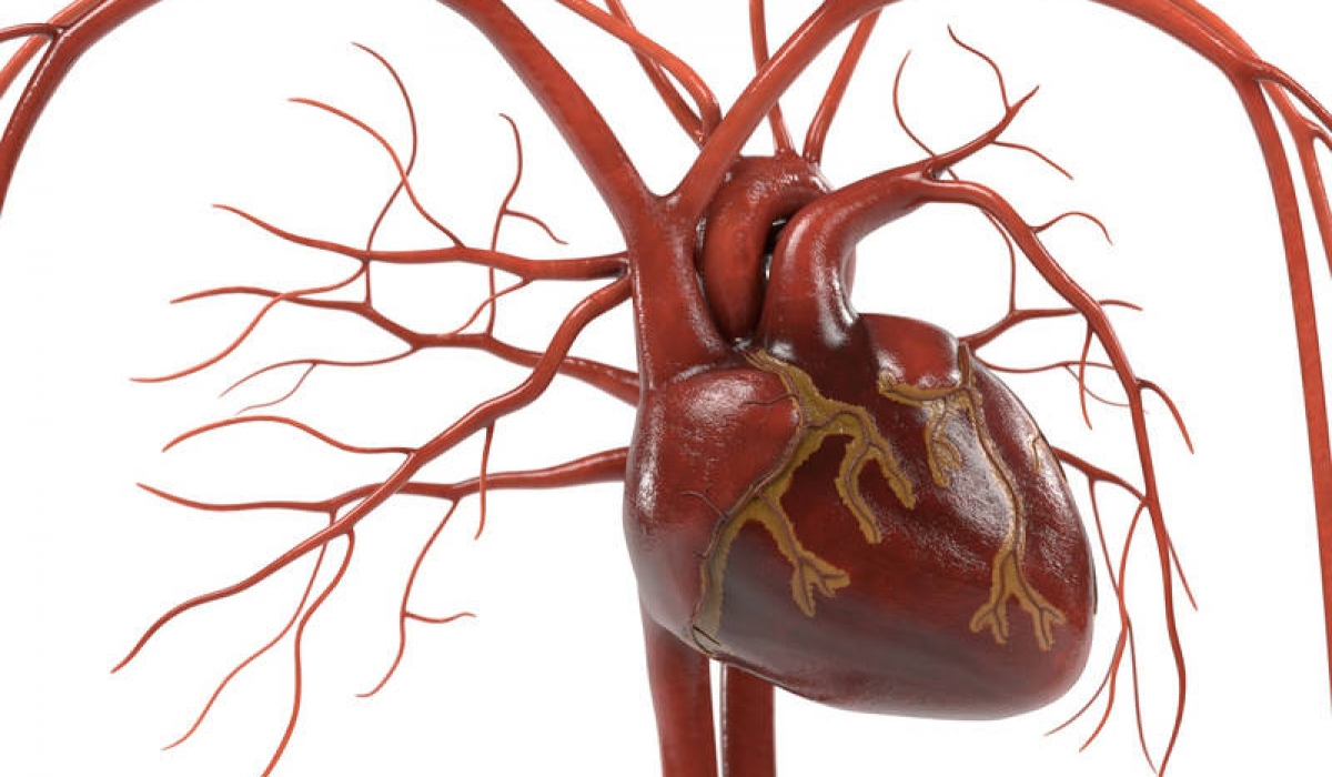 For Those With Aortic Stenosis, Options Are Available