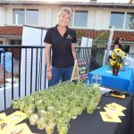Solana Beach Chamber's 6th Annual Business Expo 2