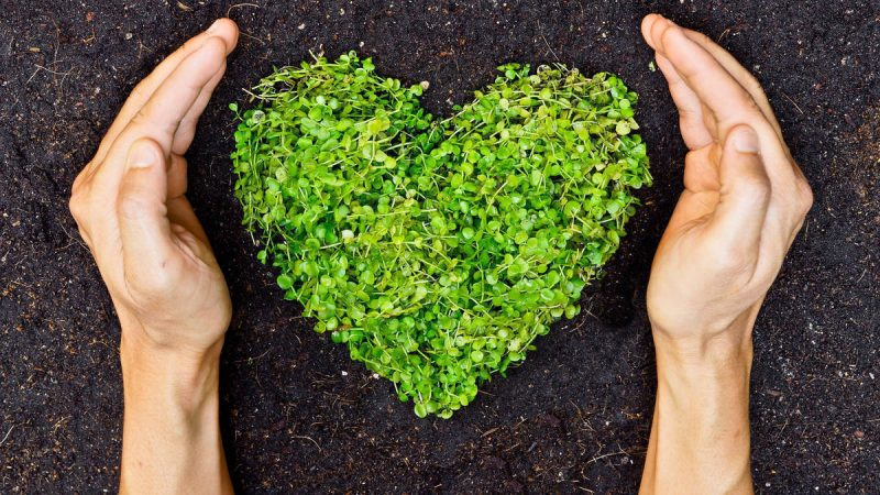 A Healthy Heart Starts 