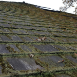Leave Roof Cleaning to an Expert 7