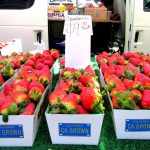 The San Clemente Farmers Market Experience 3