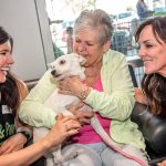Chapman BMW Hosts PAW-ty Adoption Event