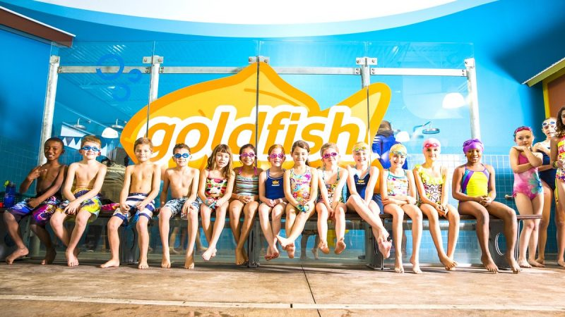 Goldfish Swim School Growing Love for Water, One Toddler at a Time