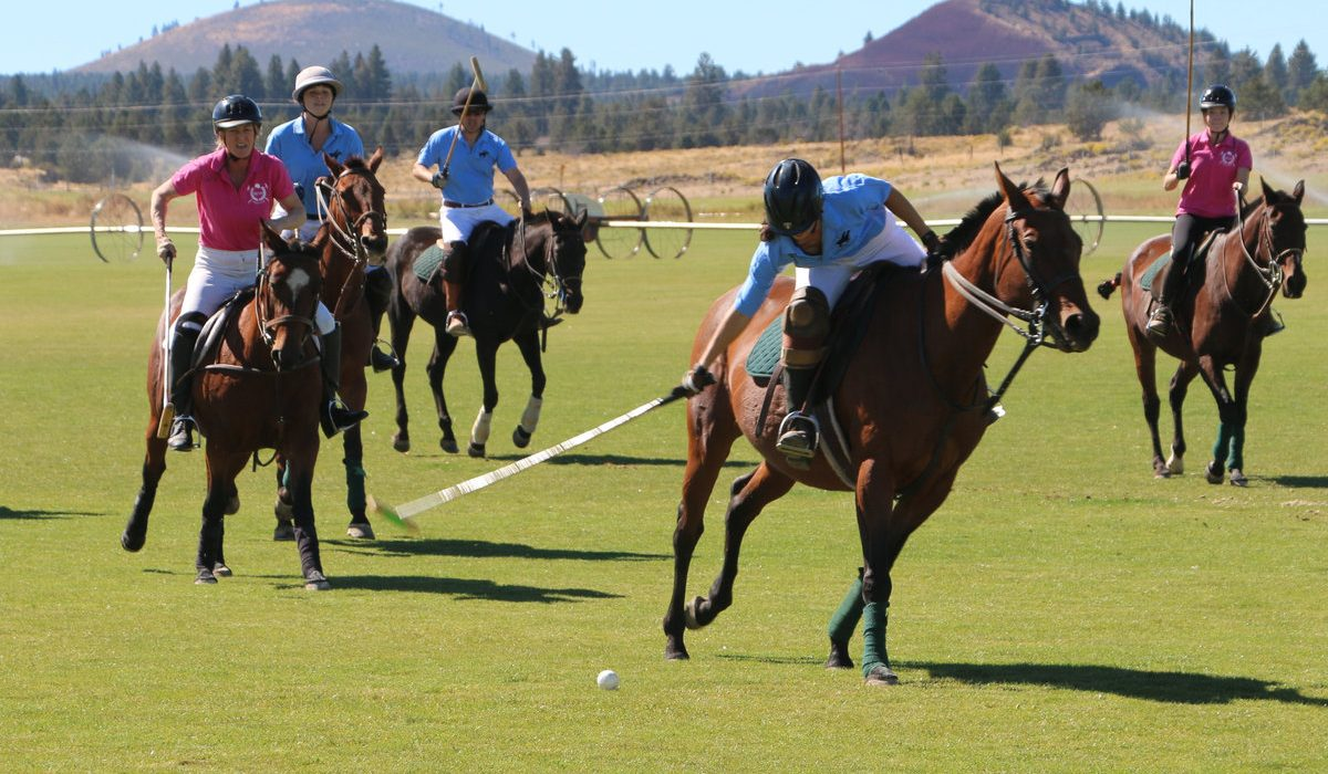 Intro to Polo Clinic