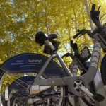 Pedaling Toward Sustainability—and Community 1