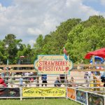 Lowcountry Strawberry Festival 2017 2