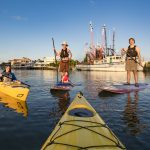 Coastal Expeditions: Kayaking, Paddling and Exploring One Adventure at a Time 4