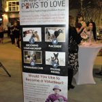 Pet-Tini Fundraiser Benefits Pets & Seniors 6