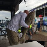Offshore Rodeo Fishing Tournament 1