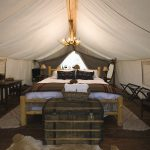 The Art of Glamping 7