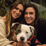 Fourth annual Paws and Pints La Jolla 3