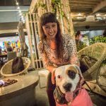 Fourth annual Paws and Pints La Jolla 2