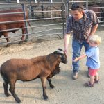A Barnyard Bash Brings Neighbors Together 6