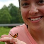 Butterfly Magic at Ladew Gardens 5