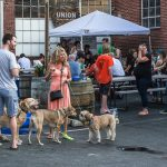 BarkHappy Puppy Pool Pawty to benefit 