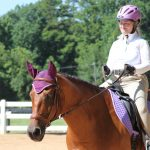 Shining Hope Farms Invitational Horse Show 17