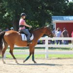Shining Hope Farms Invitational Horse Show 16