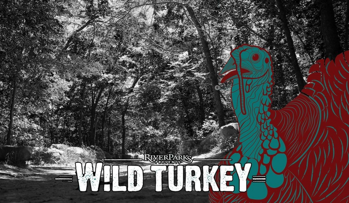 Wild Turkey - A Casual Event Under the Stars