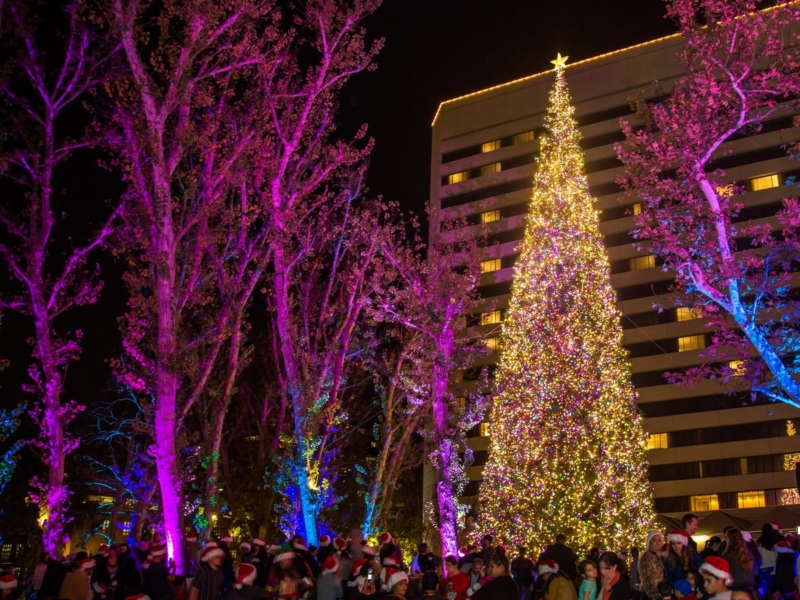 Holiday Happenings 14