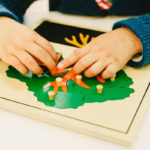 The Montessori Method 6