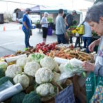 Franklin Farmer's Market Ensures a Sustainable Future
