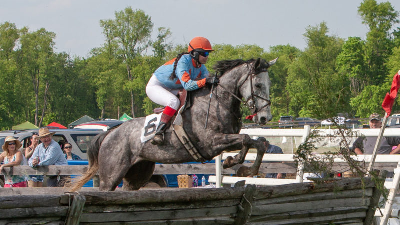 The Annual Potomac Hunt Races
