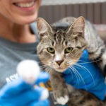 MCPAW for a Cause 3