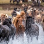 Get Inspired by Iceland 1