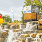 Second Annual Rhythms at the River Walk/Duck Derby a Family Affair 11