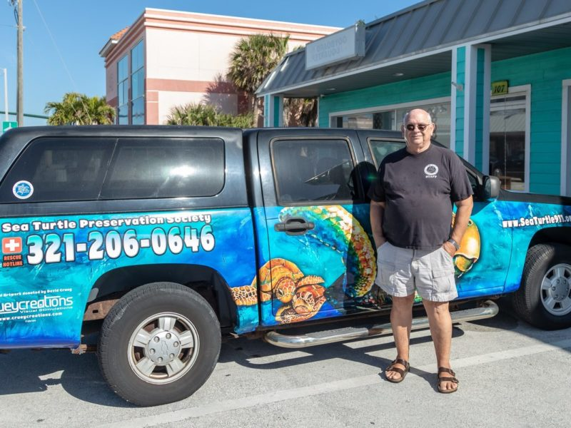 The Sea Turtle Preservation Society — Helping Sea Turtles Survive