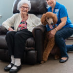 Meet Local Therapy Animals 1