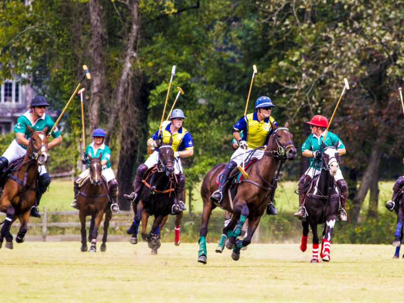 October Polo Date