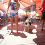 Pet-Friendly Restaurants 1