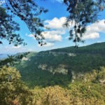 Top Seven 
