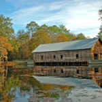 Top Seven Instagrammable Locations in Georgia State Parks 35