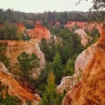 Top Seven Instagrammable Locations in Georgia State Parks 23