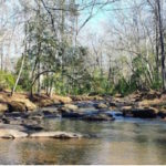 Top Seven Instagrammable Locations in Georgia State Parks 16