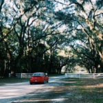 Top Seven Instagrammable Locations in Georgia State Parks 32