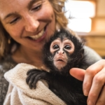Monkeys and Giraffes and Lemurs – Oh My! 7