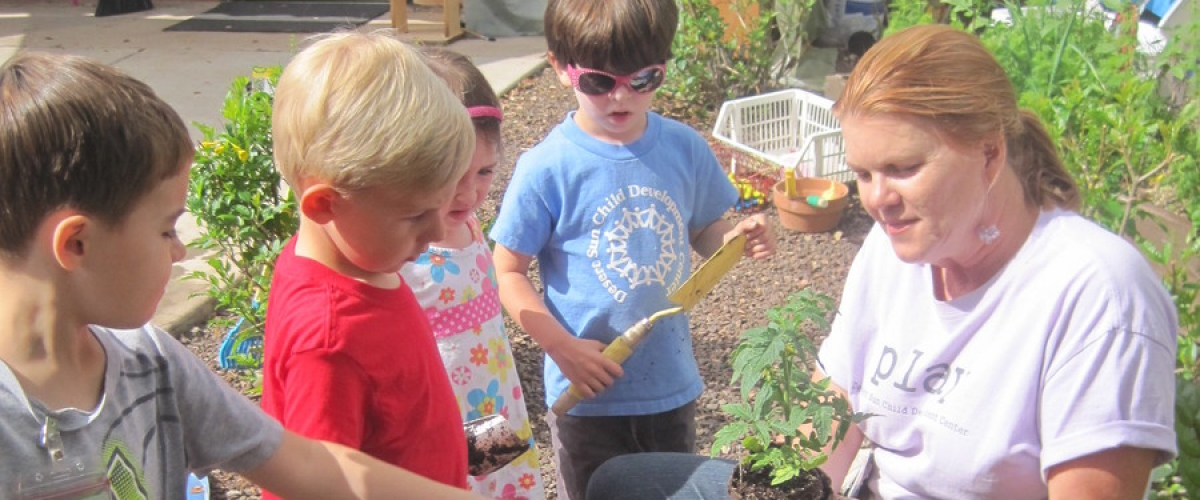 Preschoolers Learning Sustainability Through Gardening 5