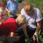 Preschoolers Learning Sustainability Through Gardening 4