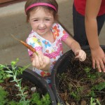 Preschoolers Learning Sustainability Through Gardening 1