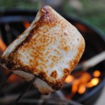 The Gourmand's Guide to Camping 31