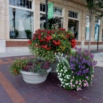 Beautifying Lee's Summit One Pot or Spot at a Time