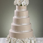 Classic Cakes and Confections 1